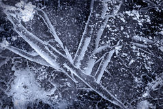 Textura do gelo Imagens de Stock Royalty Free
