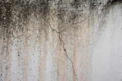 Textura do grunge do cimento e do coccrete ilustração do vetor