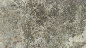 Textura-textura do grunge do fundo do fundo concreto do assoalho para o sumário da criação fotos de stock royalty free