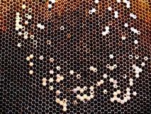 Textura do hexágono do fundo, favo de mel da cera fotos de stock