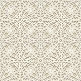 Textura do laço Imagem de Stock