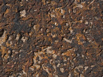 Textura do Laterite Fotos de Stock Royalty Free