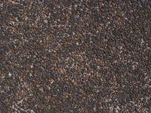 Textura do Laterite Imagens de Stock Royalty Free