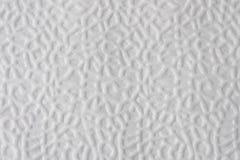 Textura do lenço de papel Imagens de Stock Royalty Free
