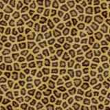 Textura do leopardo ilustração do vetor