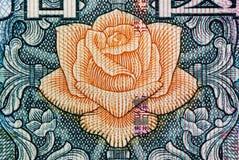 Textura do macro do fundo de Rmb Imagem de Stock