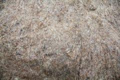 Textura do material lanoso de feltro Imagem de Stock Royalty Free