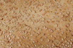 Textura do pão Fotografia de Stock Royalty Free