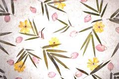 Textura do papel da amoreira da flor do vintage Imagem de Stock Royalty Free