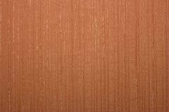 Textura do papel de parede. Foto de Stock