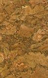 Textura do papel de parede da cortiça Fotografia de Stock