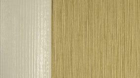 Textura do papel de parede e da madeira na parede Fotografia de Stock Royalty Free