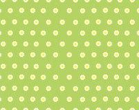 Textura do prado da flor Fotos de Stock