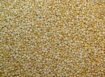 Textura do Quinoa Foto de Stock