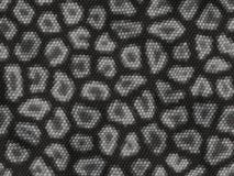Textura do réptil Foto de Stock