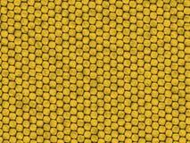 Textura do réptil - lagarto amarelo Fotos de Stock