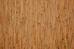 Textura do Rattan Fotografia de Stock