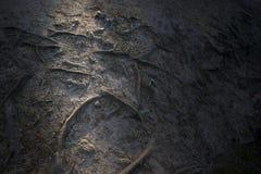 Textura do solo com raio de luz imagens de stock