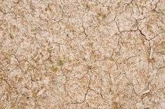 Textura do solo seco imagens de stock royalty free