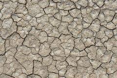 Textura do solo seco Imagem de Stock