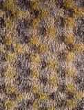 Textura do tapete de lãs Fotografia de Stock