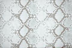 Textura do teste padrão da pele de serpente que repete preto e branco monocromático sem emenda Vetor Serpente da textura Cópia el imagem de stock royalty free