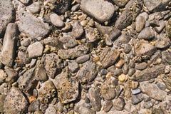 Textura do teste padrão das pedras na praia Imagem de Stock Royalty Free