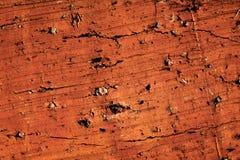 Textura do tijolo Imagens de Stock Royalty Free
