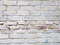 Textura do tijolo pintado branco foto de stock royalty free