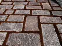 Textura do trajeto da rocha Foto de Stock Royalty Free