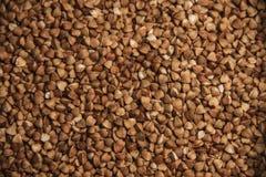 Textura do trigo mourisco Imagens de Stock