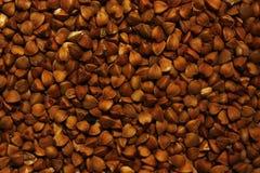 Textura do trigo mourisco imagem de stock royalty free