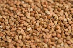 Textura do trigo mourisco, fundo do trigo mourisco imagens de stock royalty free