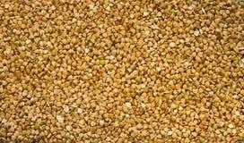 Textura do trigo mourisco verde cru com uma grão verde coração-dada forma no centro imagens de stock
