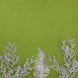 Textura do verde do quadrado com um ramo com sparkles de prata fotografia de stock