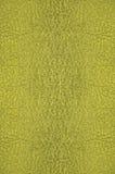 Textura do vidro verde Imagens de Stock