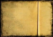 Textura do vintage Imagem de Stock