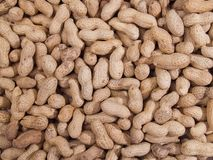 Textura dos amendoins Imagens de Stock Royalty Free