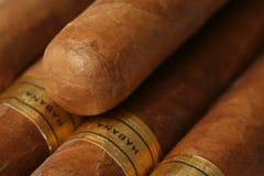 Textura dos charutos de Havana Foto de Stock Royalty Free