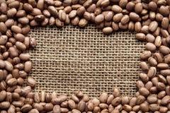 Textura dos feijões Fotografia de Stock
