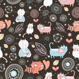 Textura dos gatos os mais engraçados Fotos de Stock Royalty Free