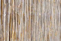 A textura dos juncos secos r O telhado é coberto com os juncos Grama seca bastão imagem de stock