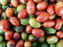 Textura dos tomates Imagens de Stock