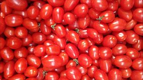 Textura dos tomates filme