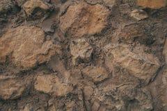Textura e fundo velhos da parede Fundo da parede para o projeto gráfico Foto de Stock Royalty Free