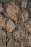 Textura e fundo velhos da parede Fundo da parede para o projeto gráfico Imagem de Stock Royalty Free