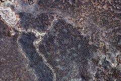 A textura e o teste padrão naturais em uma pedra resistiram pela água, pelo vento e pela geada Fotos de Stock Royalty Free