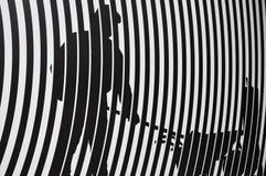 Textura e teste padrão da zebra Fotografia de Stock