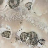 Textura egipcia del alabastro Fotografía de archivo
