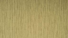 Textura elegante do papel de parede na parede Fotografia de Stock